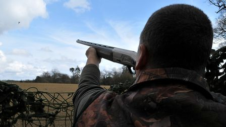 How will the revoked General Licences affect your shooting? (April 2019)
