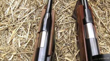 The differing pellet ports are one of many differences in seemingly similar rifles
