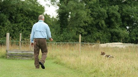 gundog training As the pup learns, you can move outside into clearly defined hunting areas