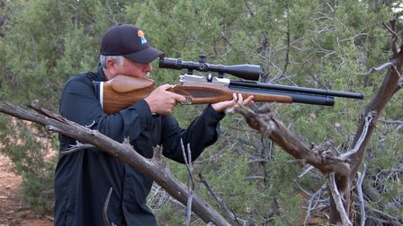 The Daystate Wolverine .303 is another example of a solid multi-species hunting rifle