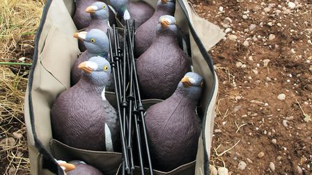Enforcer decoys are probably the best on the market