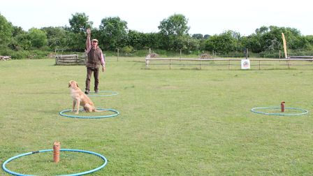The dog knows the dummy is there, but he must be looking at you to receive his instruction to 'go ba