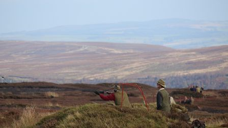 Grouse are fast and furious, so you need a cartridge to match!