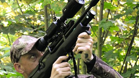 4. I'm in range and I can see the pigeon, but getting a clear shot is impossible. Oh well, I'll just
