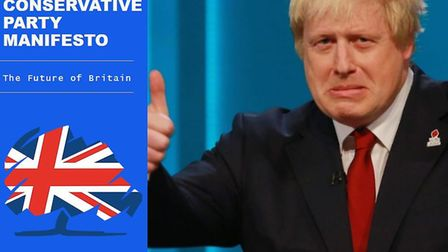 The URL 'thetorymanifesto.com' has been bought by someone who really doesn't like the Tories. Pictur