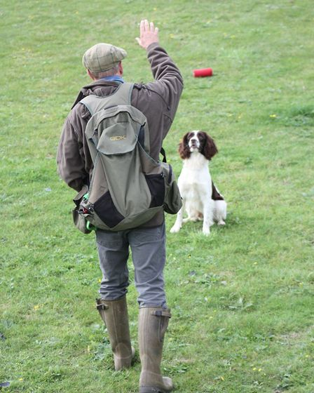 The dog will need a clear understanding of a verbal and visual 'back' or 'over' command