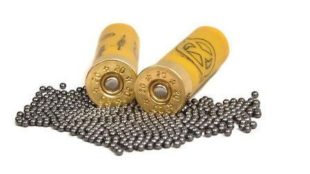 Lead ammunition is saved from a ban in Europe... for now!