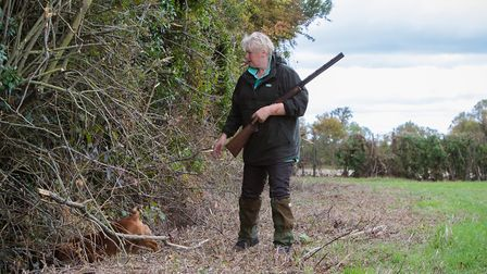 In a working scenario you will most likely lose sight of your dog once it goes through a hedge so a