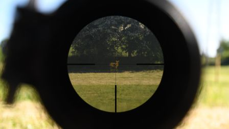 A very bright spring day with a target in deep shadow, a photo never tells the real-world optical st
