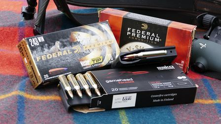 All the .243 ammo on test shot sub moa but the 70g Federal was exceptional