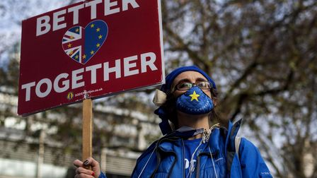 An anti-Brexit demonstrator in Westminster, London.