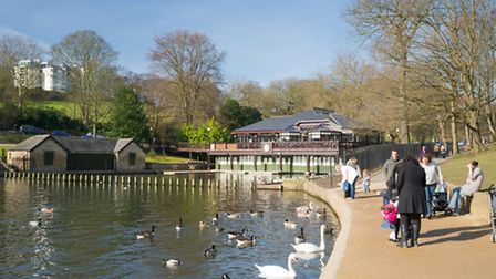 Lakeside at Roundhay Park