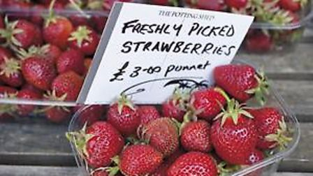 Punnets-of-strawberries