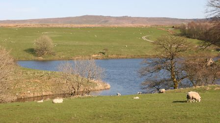 Winterburn Reservoir - built not to slake thirsts but to feed the nearby Leeds-Liverpool Canal
