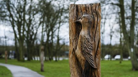 Bird carvings in Glen Gardens