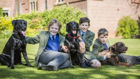 Dogs owned by the headmaster and other members of staff add to Aysgarths homely atmosphere