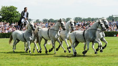 Equestrian dynamo Lorenzo back for the 160th Great Yorkshire Show with a daredevil bare-back displa