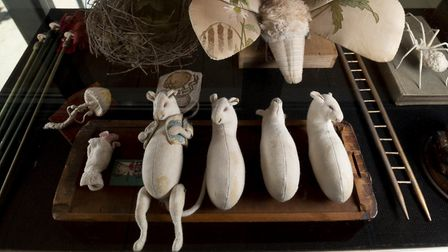 Mice-in-the-making – a squeak preview of what's on offer on the Bretton Estate in West Yorkshire