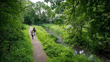 Potteric Carr is an urban nature reserve in Doncaster