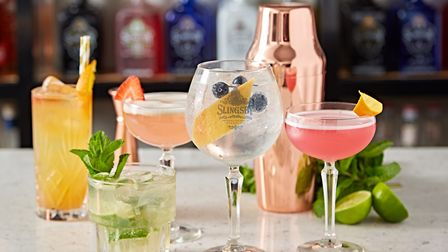A selection of gins and botanicals