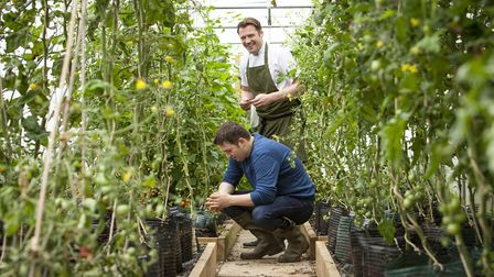 Chef Tommy Banks and brother James get busy in the greenhouse