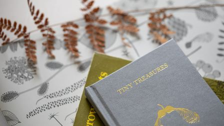 Hannahs inspiration is captured in her book, Tiny Treasures, which reveals the stories behind her de