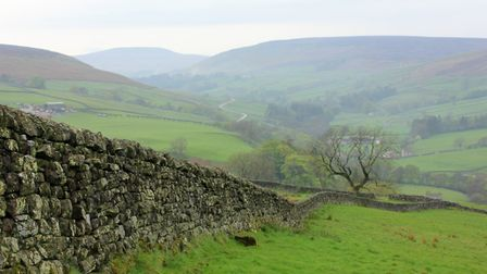 Plans include accommodation so visitors can enjoy the restored landscape