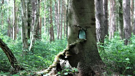 Northwood Fairy Trail has been designed to spark the imagination