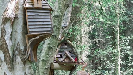 Tiny fairy treehouses can be spotted around the wood