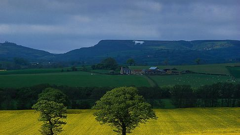 The White Horse seen from a distance. This walk takes you close by to this Yorkshire landmark. Pictu