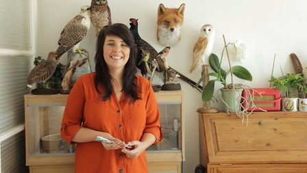 The art of taxidermy