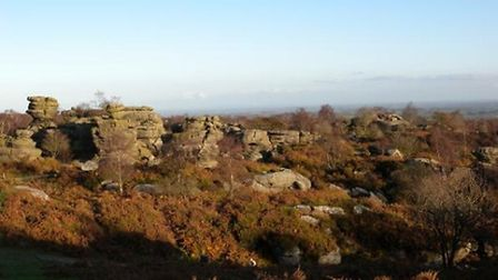 Brimham Rocks by Lynne Naylor