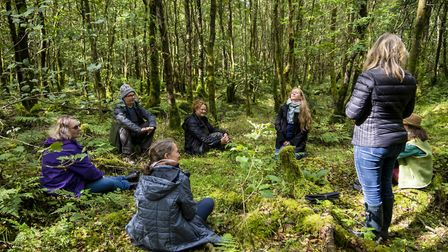 Forest Bathing Liz Dawes leads a workshop