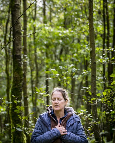 Liz Dawes leads forest bathing sessions in Yorkshire