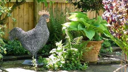 30 inch tall, galvanised, specimen cockerel with copper comb