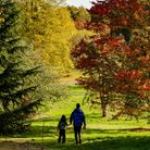 Splendid autumn landscape at Yorkshire Arboretum