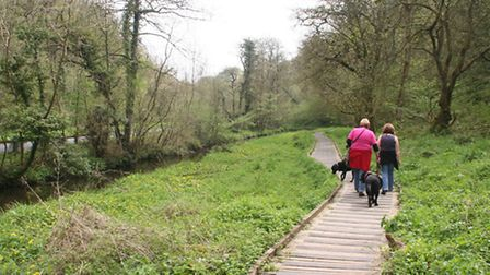 Forge Valley is popular with dog walkers, botanists and birdwatchers