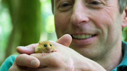 Ian White introduces a hazel dormouse to the Yorkshie Dales