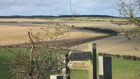 Walking & Outdoors festival takes place in the Yorkshire Wolds in September Photo: John Holtby