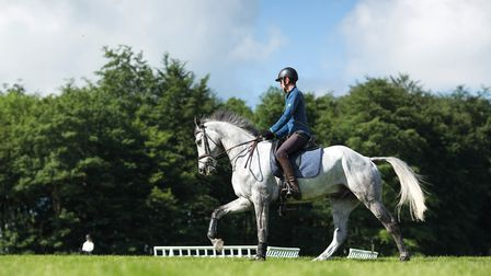 Hector Payne and Dynasty get ready for dressage