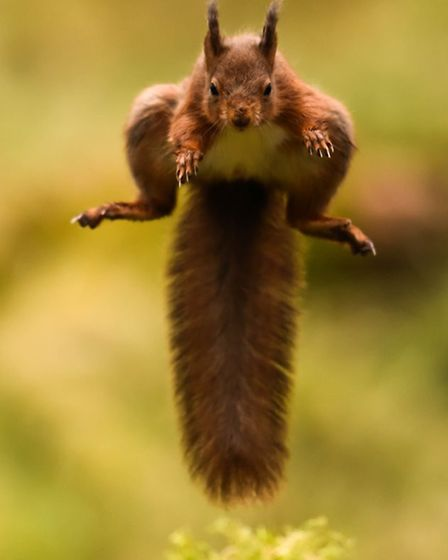 Leap of faith, Snaizeholme by Andy O'Brien