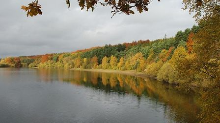 Reflections at Swinsty Reservoir by Phil Moon