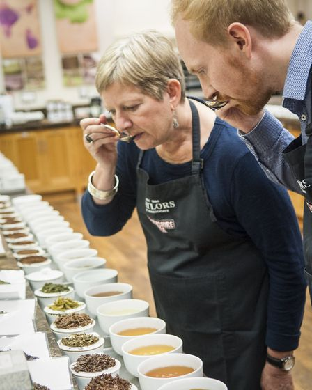 Tea tasting at Taylors
