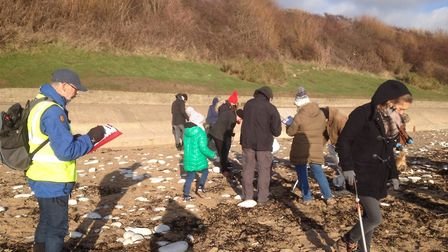 beach clean at North Bridlington