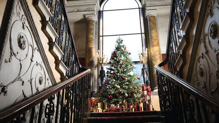 The Christmas tree stands proudly on the main staircase