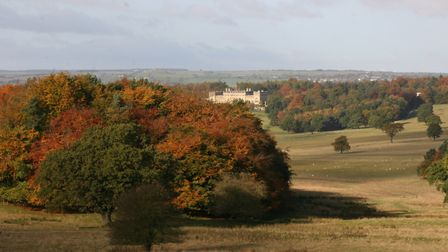 Harewood House by Terry Fletcher
