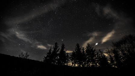 Dalby Forest is the perfect star-gazing spot (c) Steve Bell