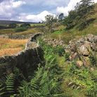 One of the many ancient routes across the moors. Photo by Paul Besley