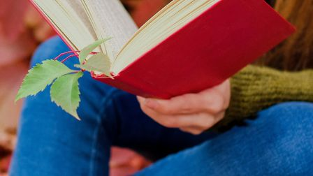 Autumn and books: perfect partners ]