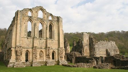 Ruins of Rievaulx Abbey by Terry Fletcher